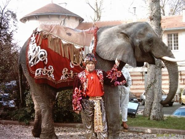 Louer un éléphant  Tél:06.03.71.90.62